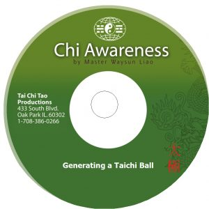generating-a-taichi-ball