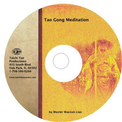 beginner tao gong video