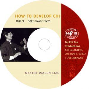Split Form in Tai Chi DVD