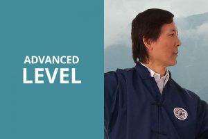 advanced taichi video