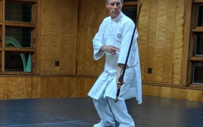 New Auxiliary Training Intro – Taichi Sword, Knife, Staff, Spear and Gong!
