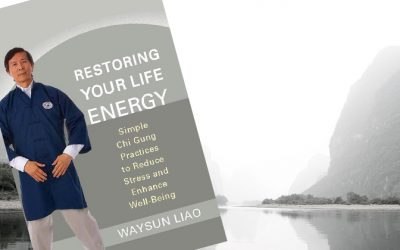"Companion Video Course for ""Restoring Your Life Energy"""