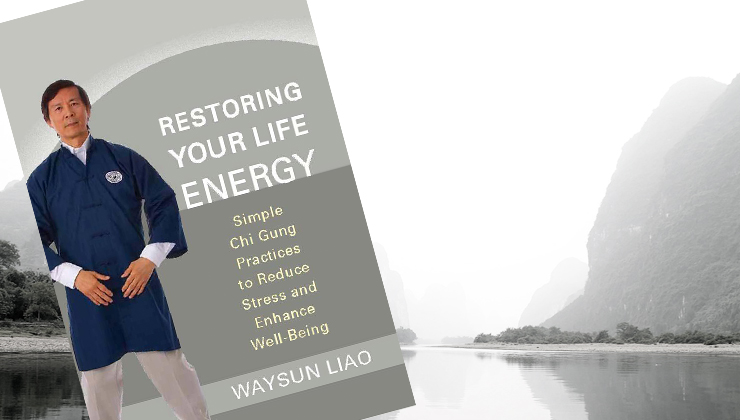 "New! Companion Video Course for the Book ""Restoring Your Life Energy"""