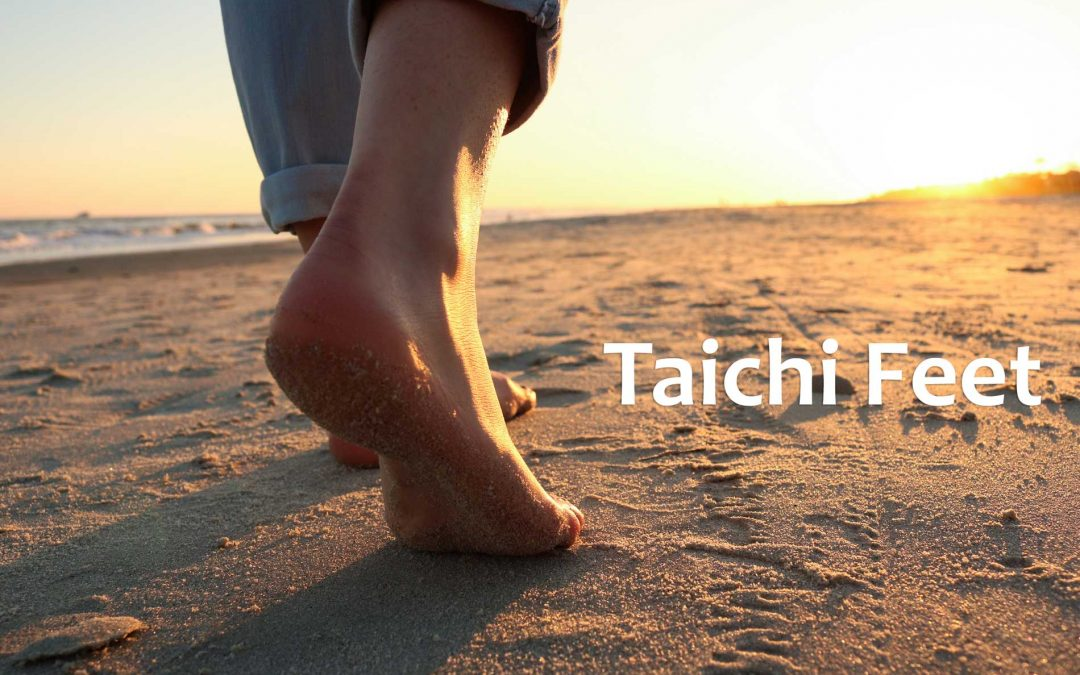 Taichi Feet – Ending Your Conflict with Gravity!